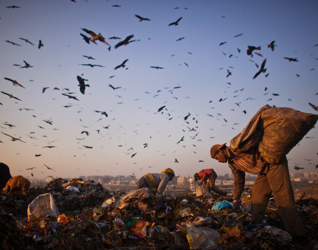 Trash is expected to double by 2024