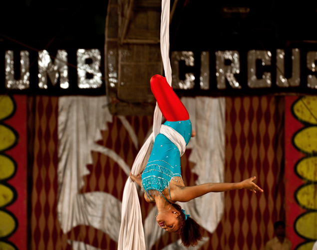 A trapeze artist hangs upside down during a performance at the Jumbo Circus in Gurgaon.