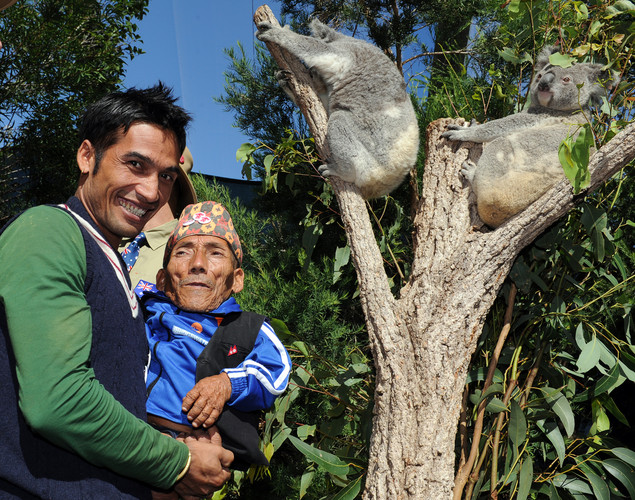 Chandra Bahadur Dangi (R), the 72-year-old Nepali crowned the 'world's shortest man' by Guinness World Records, and his nephew Dolakh Dangi (L) visit the koalas at Wildlife World in Sydney.