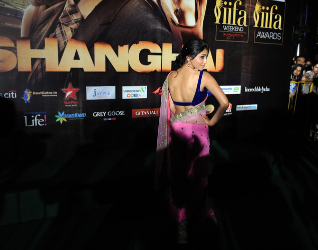 Bollywood actress Shreya Saran poses for the media after arriving at the green carpet to attend the premier of their new movie 'Shanghai' during the International Indian Film Academy (IIFA) awards event, in Singapore.