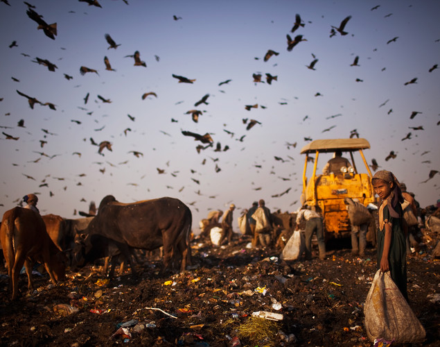 Growing trash also means growing profits for India's rag pickers