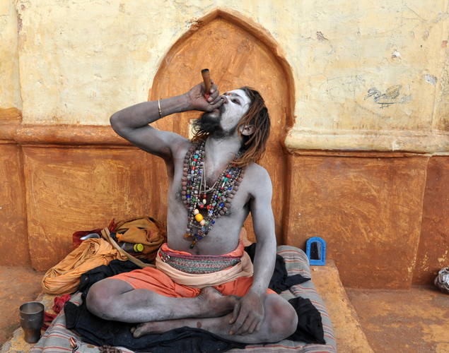 Some think Sadhivs (female Sadhus) are forms of the Goddess, or Devi, and are honored.
