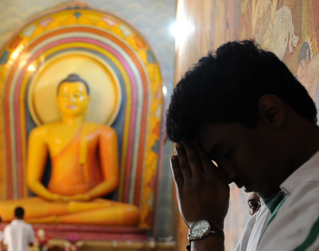 A Sri Lankan devotees pray at a Buddhist shrine in observation of Vesak in Colombo.