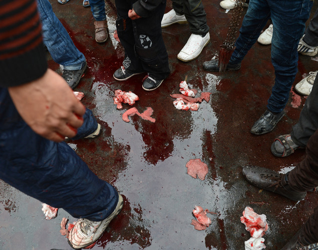 Onlookers stand in a pool of blood as Kashmiri Shiite Muslims perform acts of self-flagellation with a sharp knives during a religious procession held on the seventh day of Ashura in Srinagar.