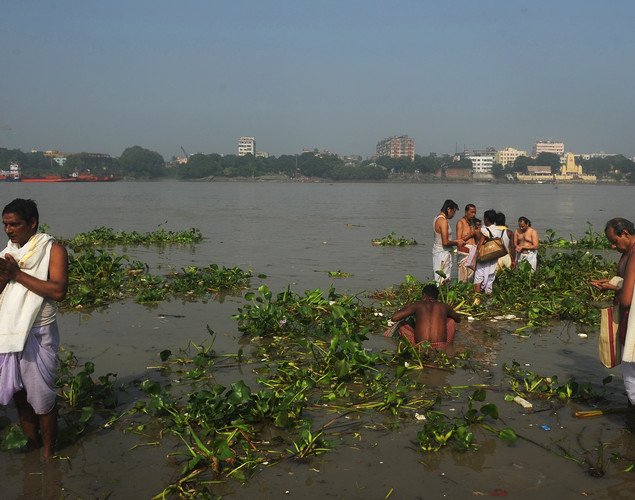 Indian Hindu devotees perform 'Tarpan', rituals to pay obesience to one's forefathers on the last day of 'Pitrupaksh' - days for offering prayers to ancestors, on the banks of the holy river Ganga in Kolkata.