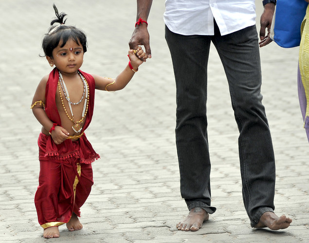 An Indian toddler dressed as Hindu God Lord Krishna holds his parent's hands while arriving at a fancy dress competition held at the International Society for Krishna Consciousness (ISKCON) temple in Bangalore on August 9, 2012 on the eve of 'Krishna Janmashtami'.