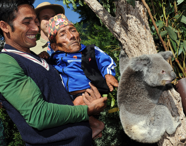 Chandra Bahadur Dangi (R), the 72-year-old Nepali crowned the 'world's shortest man' by Guinness World Records, and his nephew Dolakh Dangi (L) meet Elle the koala at Wildlife World in Sydney.