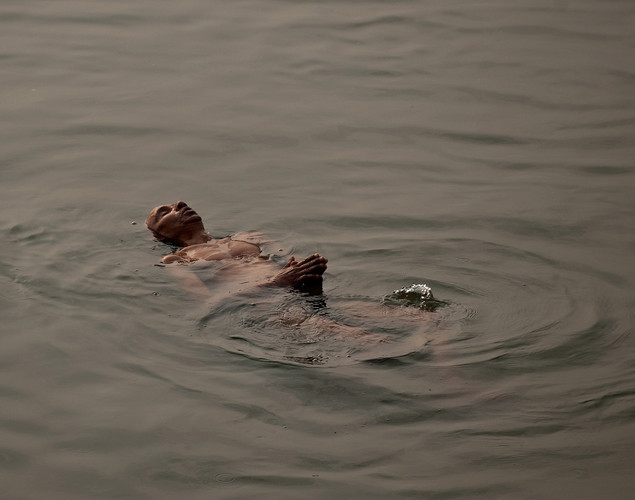 The Ganges has its very own river dolphin, which is now on the endangered species list due to hunting.