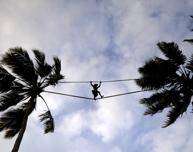 A toddy tapper walks on a rope as he crosses between coconut trees in order to collect sap to make palm wine, or toddy as it is locally known, in Wadduwa.