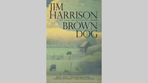 Finally, all the Brown Dog novellas together