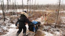 Iditarod: 5 things to know about trail conditions