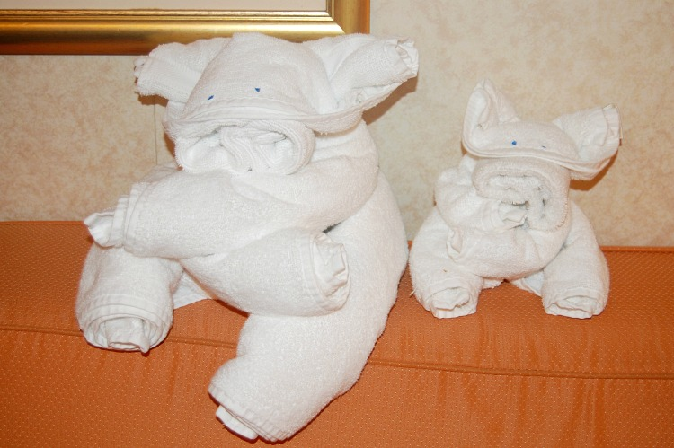 cruise towel animals