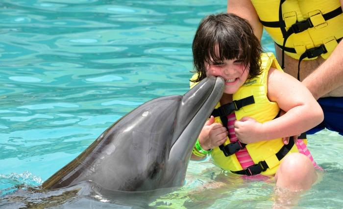 interactive-dolphin-experience.jpg