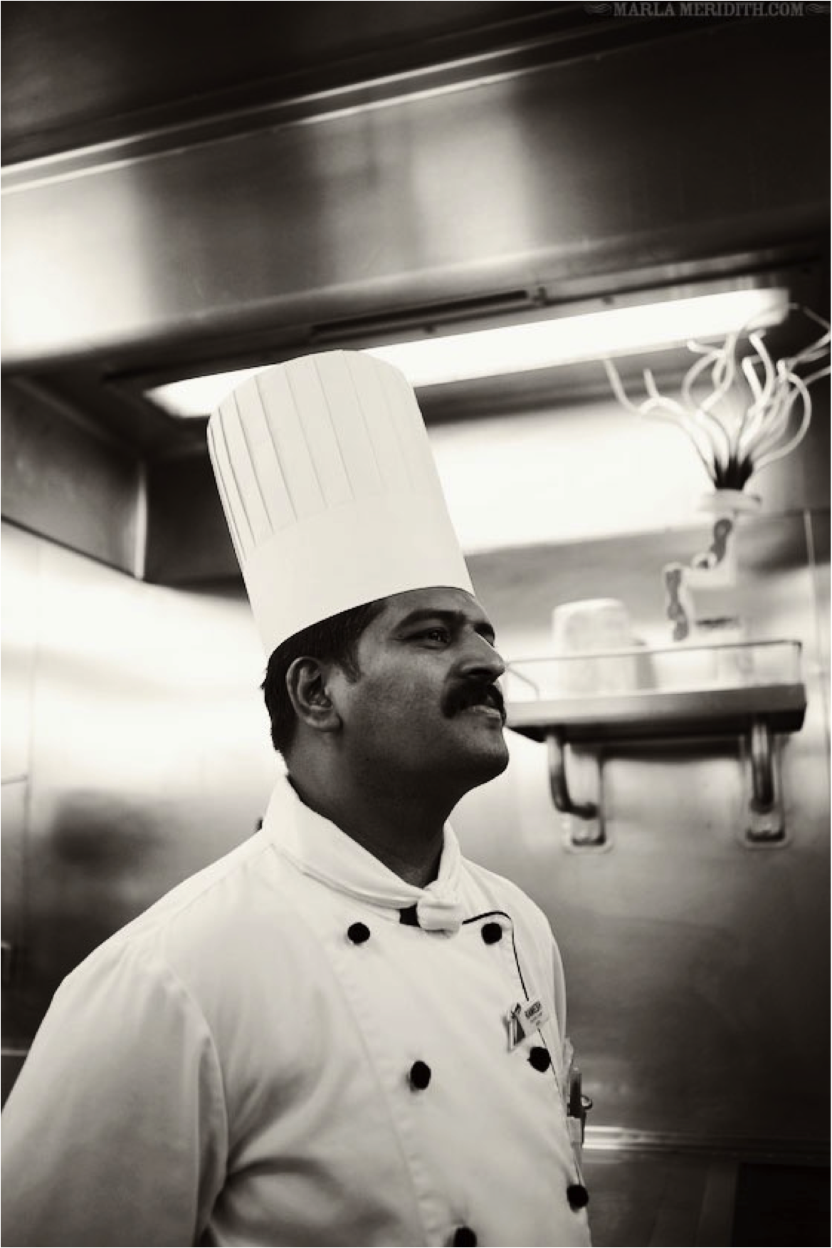 Behind the Scenes: The Carnival Chef\'s Table