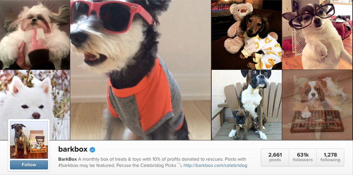 barkbox content marketing