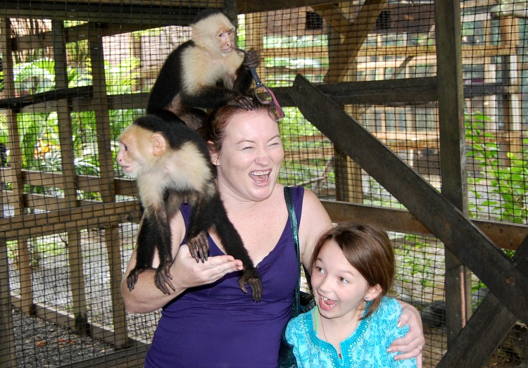 monkeys roatan